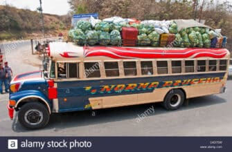 chicken-buses-from-overseas