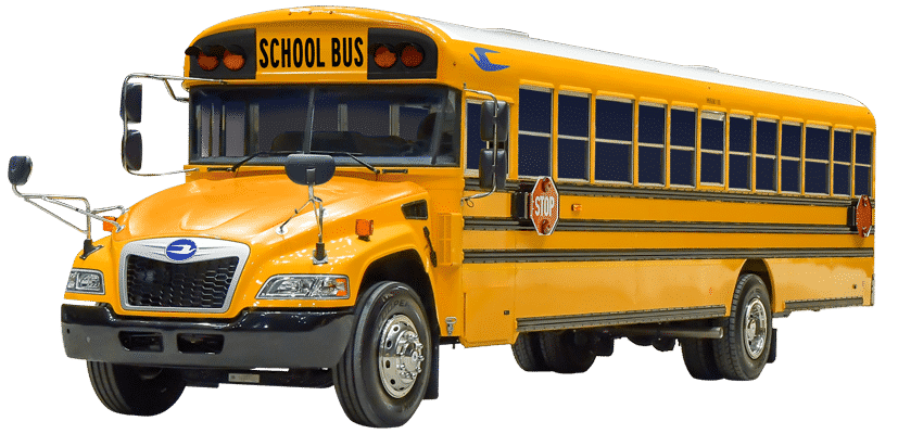 blue-bird-buses