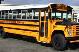 wayne-buses