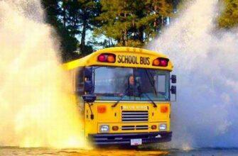 great-school-bus-photos