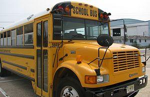 carpenter-buses